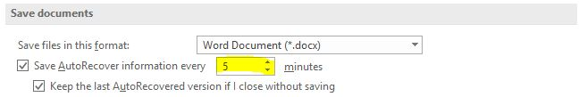 A screenshot of the save documents feature in the  Word Options Menu.