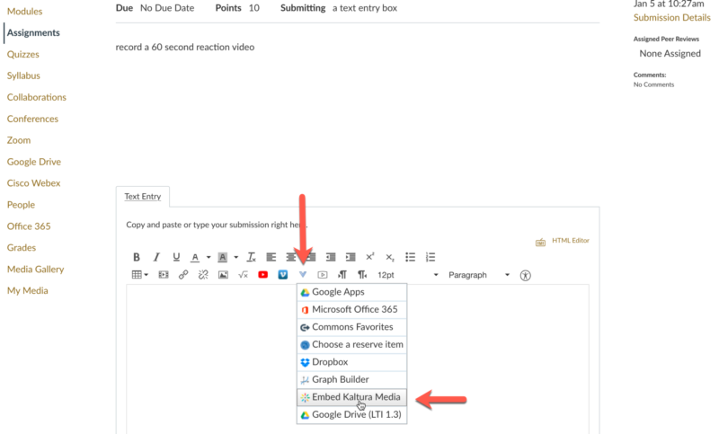 showing the RCE's More External Tools button and the Embed Kaltura Media choice