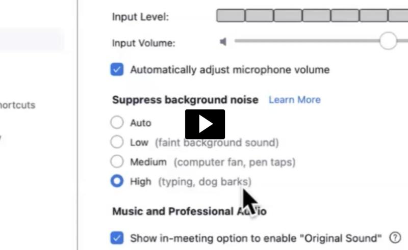 Zoom: Suppress Background Noise