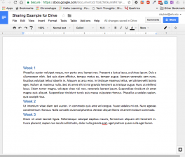 Google Doc Screen Capture
